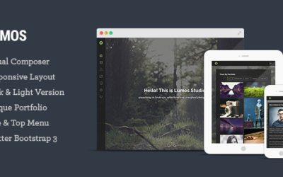 Lumos – Multipurpose Single/Multi-page WP Motyw